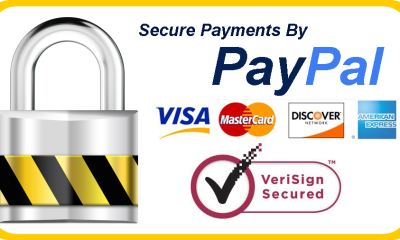 Paypal_Security